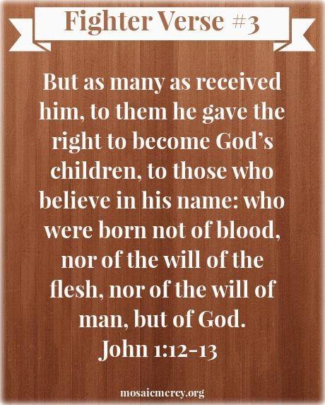Fighter Verse Set 1:03 – John 1:12-13 | Godinterest